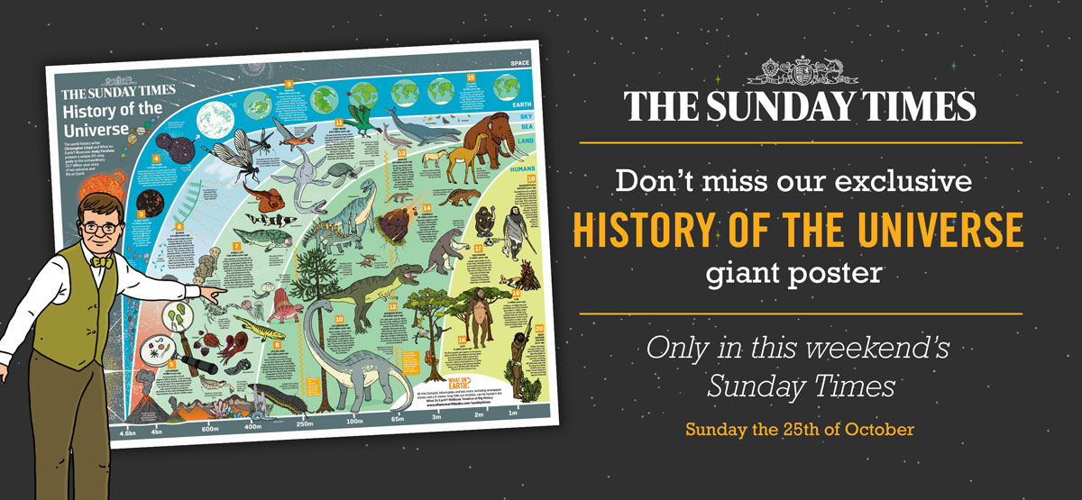 Sunday-times-banner