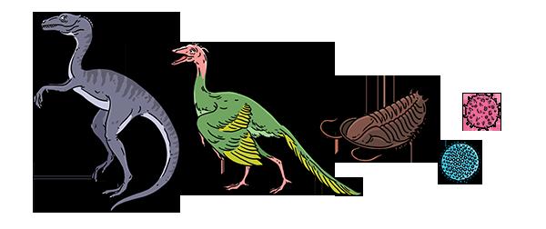 Dino-Evolves (1)
