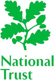 NT Logo