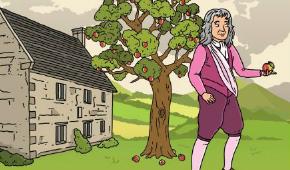 Newton Image