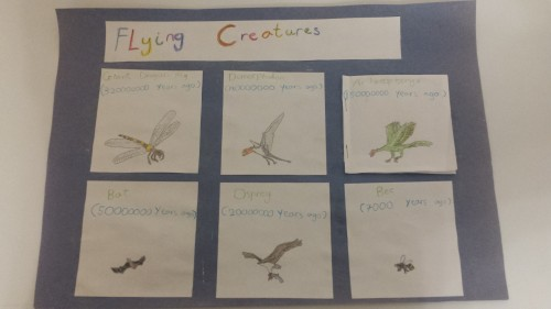 flying creatures 1
